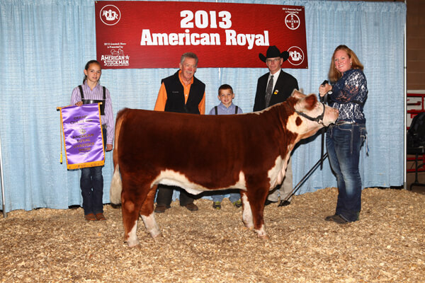 Miniature Hereford Results From The 2013 American Royal
