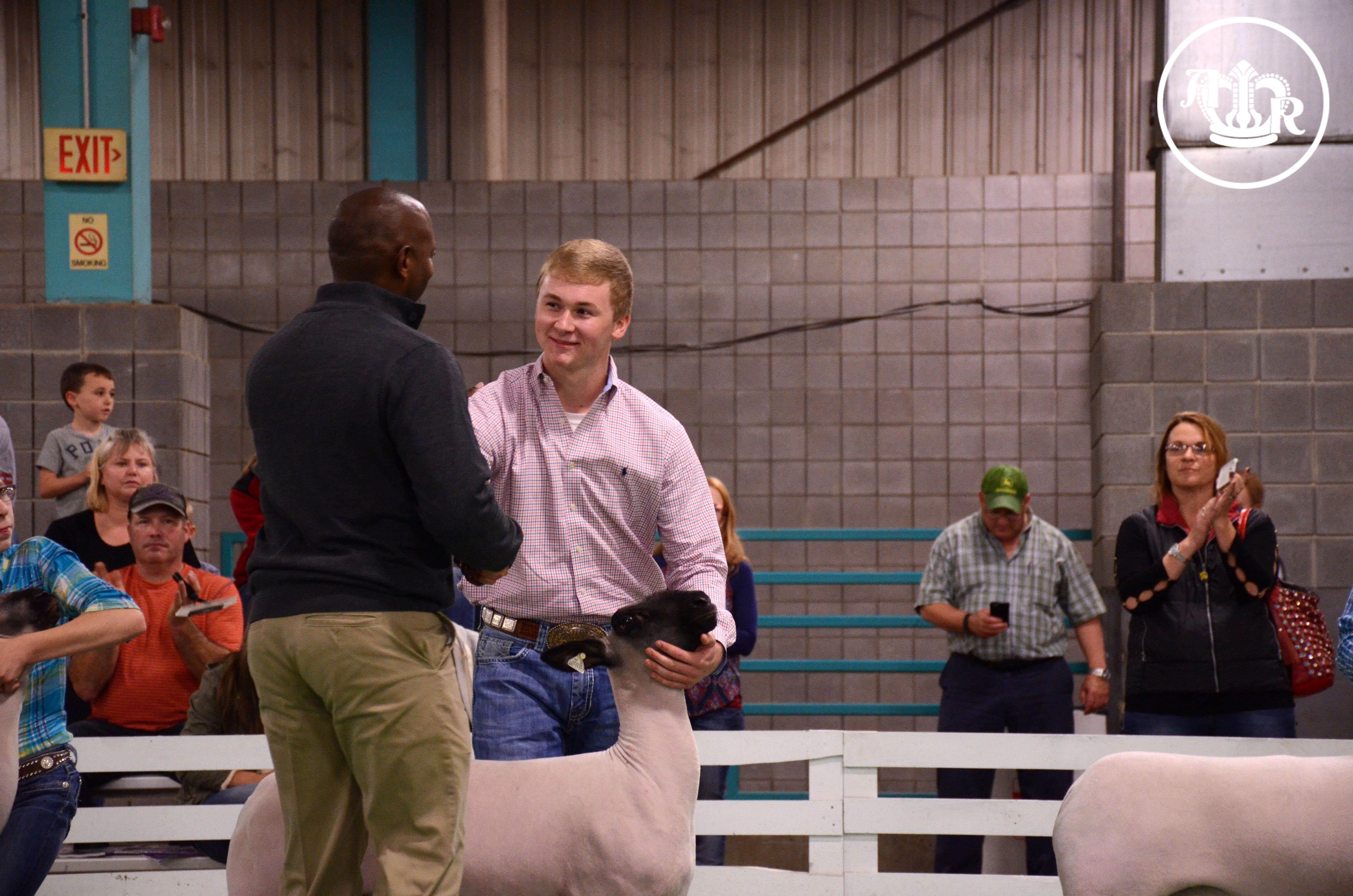 Harlow Named Top Market Lamb Showman