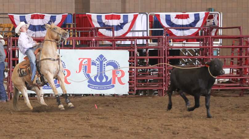 Youth Rodeo American Royal