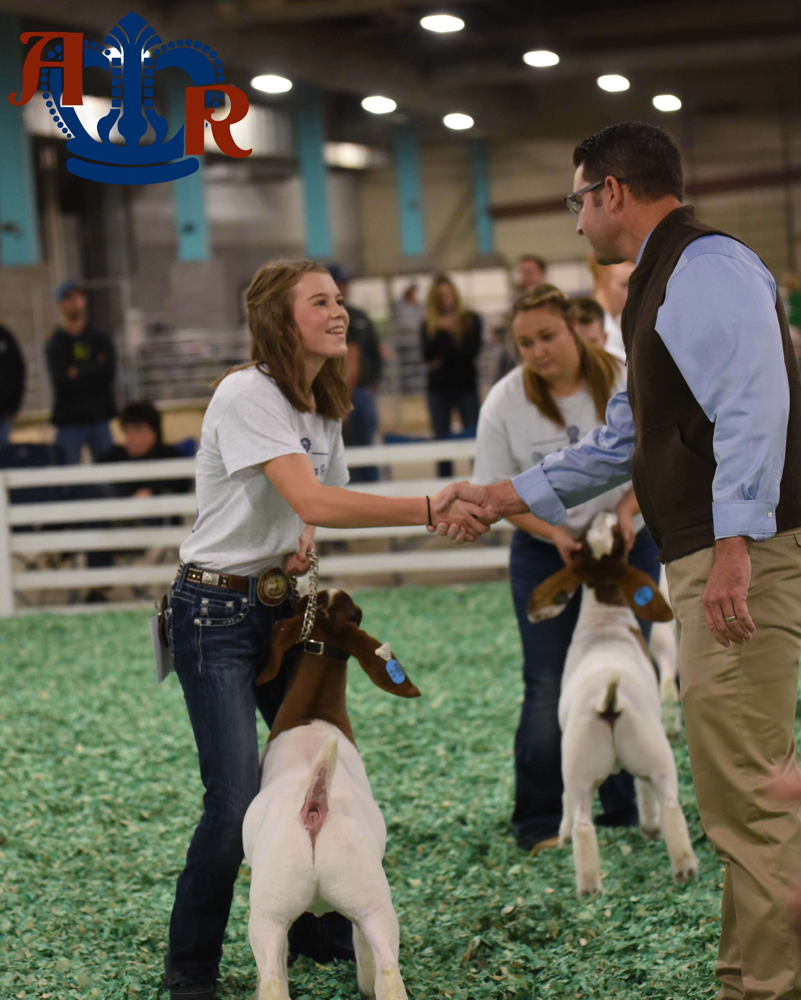 Stiff Competition in the Junior Market Goat Show