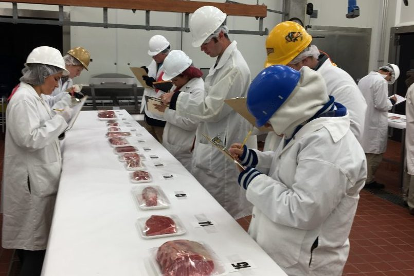 Meats Judging Contests American Royal