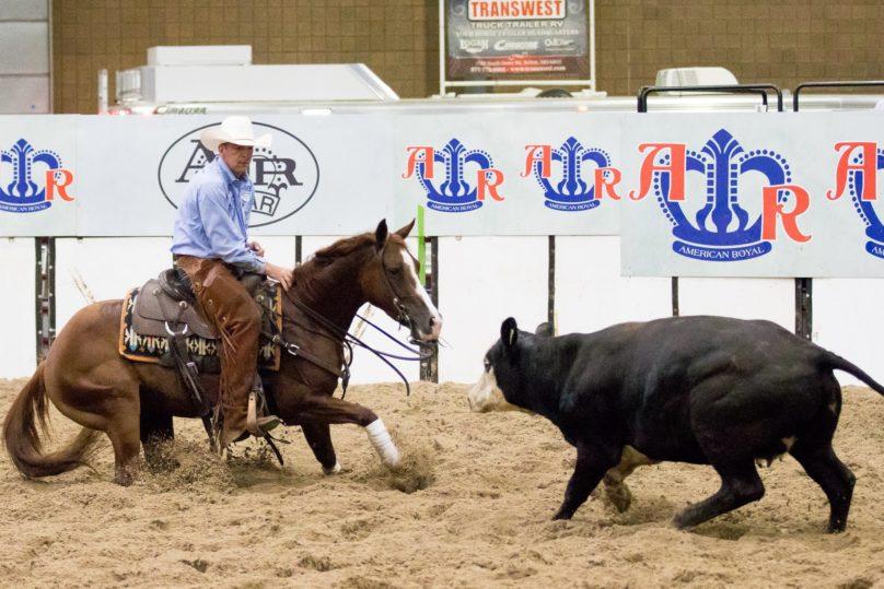 Cutting Horse American Royal